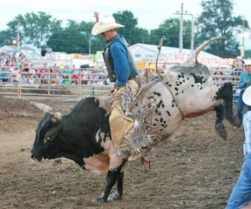 Holmes County Agriculture Society/Holmes County Fair