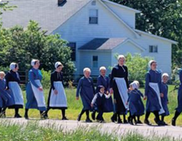 Amish and Holmes County